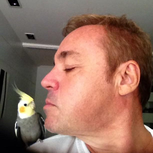 Gugu Liberato quase beija calopsita (Foto: Instagram)
