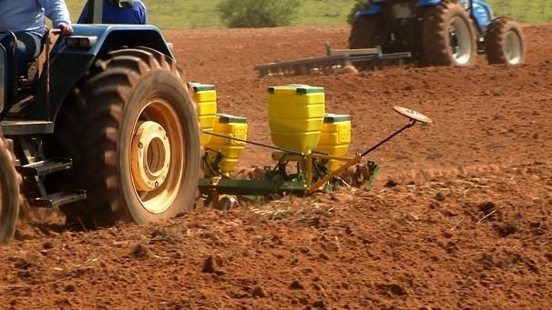 Plantil de milho na região é um dos destaque do Fronteira do Brasil (Foto: Reprodução TV Fronteira)