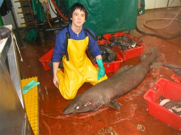 Clerkin com mais um tubarão raro; expedição capturou oito animais que podem ser de novas espécies (Foto: Moss Landing Marine Laboratories/Divulgação)