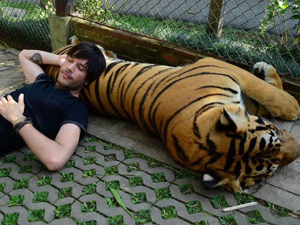 Mayke tira uma soneca com um tigre durante uma de suas viagens à Ásia. (Foto: Arquivo pessoal)