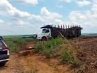 Menino de 7 anos morre ao 'pegar rabeira' de caminhão em Rafard, SP