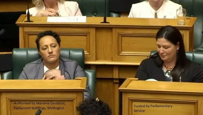 Deputadas amamentam durante sessão no Parlamento (Foto: Reprodução Facebook)