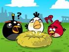 Lucro da empresa que criou 'Angry Birds' caiu 50% em 2013