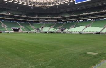 Primeira vez de reforços, retrospecto e torcida: a volta do Palmeiras para casa
