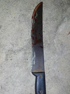 Facão usado em crime de Ji-Paraná, RO (Foto: Magda Oliveira/G1)