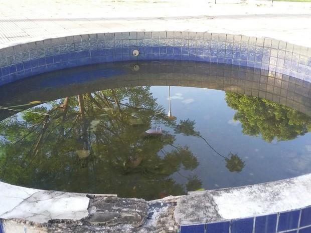 Água parada pode se tornar criadouro para o mosquisto transmissor da dengue (Foto: Alessandro Vieira/Arquivo Pessoal)
