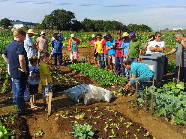 Curitiba tem 20 hortas comunitárias que estão aprendendo a fazer compostagem para transformar o lixo orgânico em adubo (Foto:  Rodolfo Brasil Queiroz / Arquivo Pessoal)