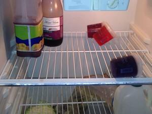 Brasileiras temem faltar comida no apartamento onde elas estão (Foto: Márcia Cristina Medeiros/Arquivo pessoal)
