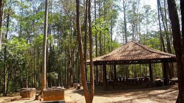Parque Anhanguera (Foto: divulgao)