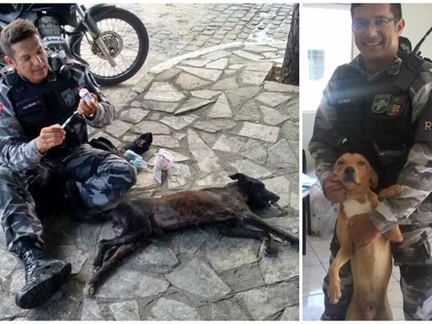 O sargento da Polícia Militar, Patria Junior, cuida de animais na cidade de Patos (Foto: Reprodução/Facebook)