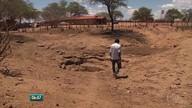 Moradores de povoado no Sertão sofrem com a falta de chuva e de água de carros-pipa