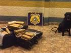 Jovem de 21 anos é presa por transportar droga em ônibus, em GO