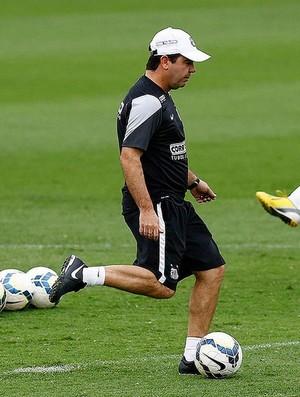 enderson moreira (Foto: Ricardo Saibun / Santos FC)