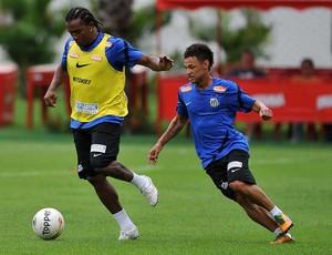 Pinga e Neilton (Foto: Divulgação Santos FC)