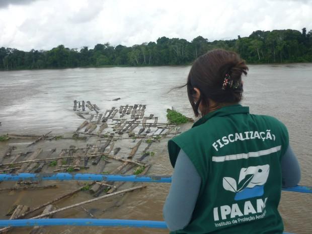 Madeira apreendida foi encontrada sendo transportada no Rio Tapauá (Foto: ASCOM/Ipaam)