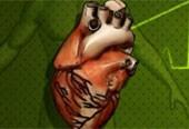 coração (Foto: TV Globo/Reprodução)