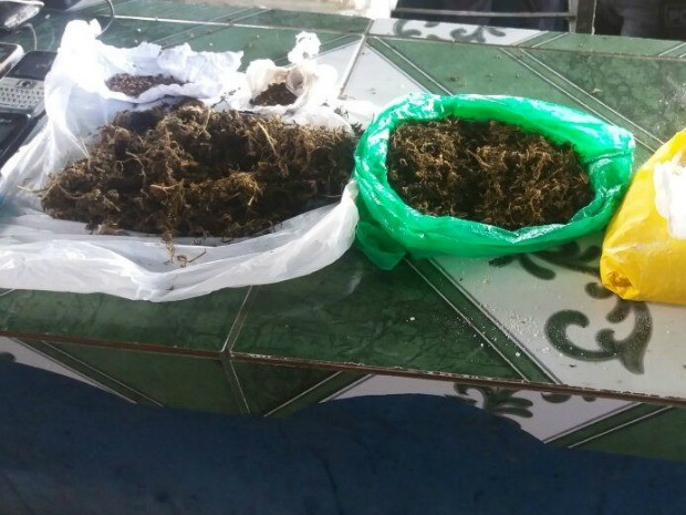 Presos estavam com meio quilo de maconha, segundo polícia (Foto: Divulgação/Polícia Militar)