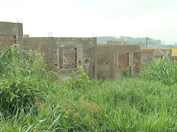Mato cresce em meio às obras de casas populares, após construtora abandonar projeto (Foto: Antônio Luiz/EPTV)