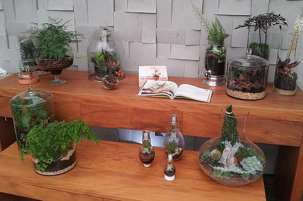 novidades da Expoflora, e apaixonese pelas flores, plantas e jardins