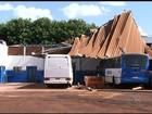Temporal derruba árvores, destelha imóveis e destrói casa em GO; veja