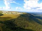 Redução de área ambiental protegida é retrocesso, diz governo do Paraná