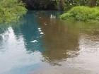 Rio na Paraíba muda de cor após receber água poluída, diz pescador
