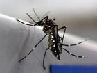 RN notifica 1.820 casos suspeitos de dengue nos primeiros 30 dias de 2016