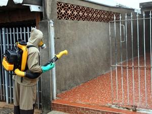 Nebulização ajuda contra proliferação do mosquito da dengue (Foto: Marcel Carloni/Prefeitura de Santa Bárbara)