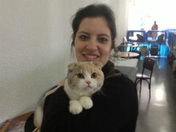"""A advogada Ana Cláudia Andrade apresenta o gato da raça Scottish Fold, conhecido como """"gato de botas"""" (Foto: Rodrigo Saviani)"""