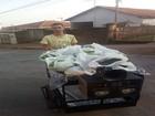 Jovem empreende, cultiva alfaces em casa e cresce com vendas em Abaeté