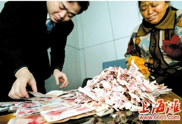 Ratos destruíram dinheiro que casal guardava em armário (Foto: Reprodução)
