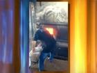 Polícia incinera quilos de maconha, crack e cocaína em Andradina