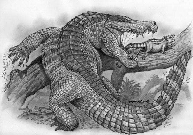 Ilustração mostra como era o réptil 'Sahitisuchus fluminensis', que viveu no Brasil há milhões de anos (Foto: Divulgação/Serviço Geológico do Brasil)