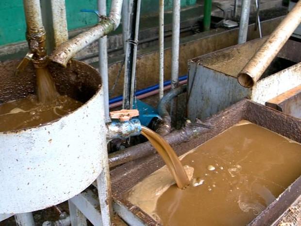Produto passa por um processo de triagem, onde os resíduos ganham destinação adequada (Foto: Reprodução/TV Gazeta)