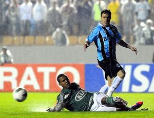 Palmeiras x Grêmio, Kleber (Foto: Marcos Ribolli  / Globoesporte.com)