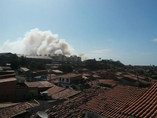 Reserva ambiental do Batalhão do Exército pega fogo em São Luís (Foto: divulgação/policia)