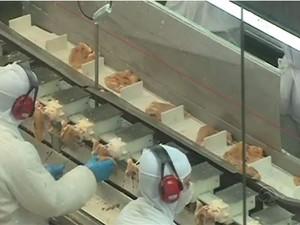 Em 2014, Santa Catarina exportou 159 mil toneladas de carne suína (Foto: Reprodução/RBS TV)