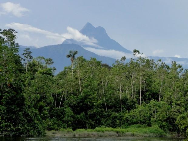 O pico da Neblina, ponto mais alto do Brasil, localizado na serra do Imeri, no norte do Amazonas (Foto: ICMBio/MMA)
