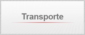 Selo desempregado transporte (Foto: G1)