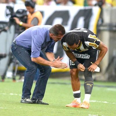 Vagner Mancini, Botafogo X Palmeiras (Foto: André Durão)