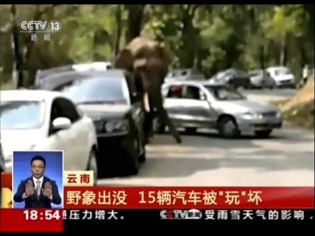Após desilusão amorosa, elefante danifica 15 carros na China (Foto: CCTV/AP)