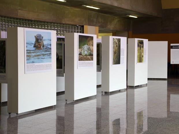 Cristian Dimitrius, 'Olhar Selvagem', Itajubá, Unifei, exposição fotográfica, Domingão Aventura, Rede Globo (Foto: Divulgação/ Unifei)