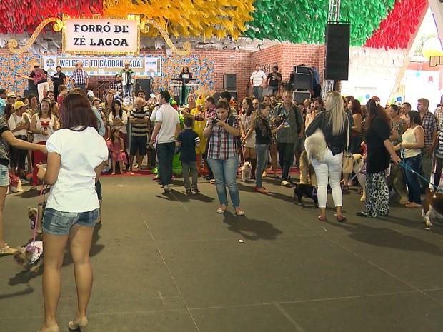 Após caminhada e show de adestramento, 1ª Cãodrilhada terminou na PIrâmide do Parque do Povo com show infantil (Foto: Reprodução/TV Paraíba)