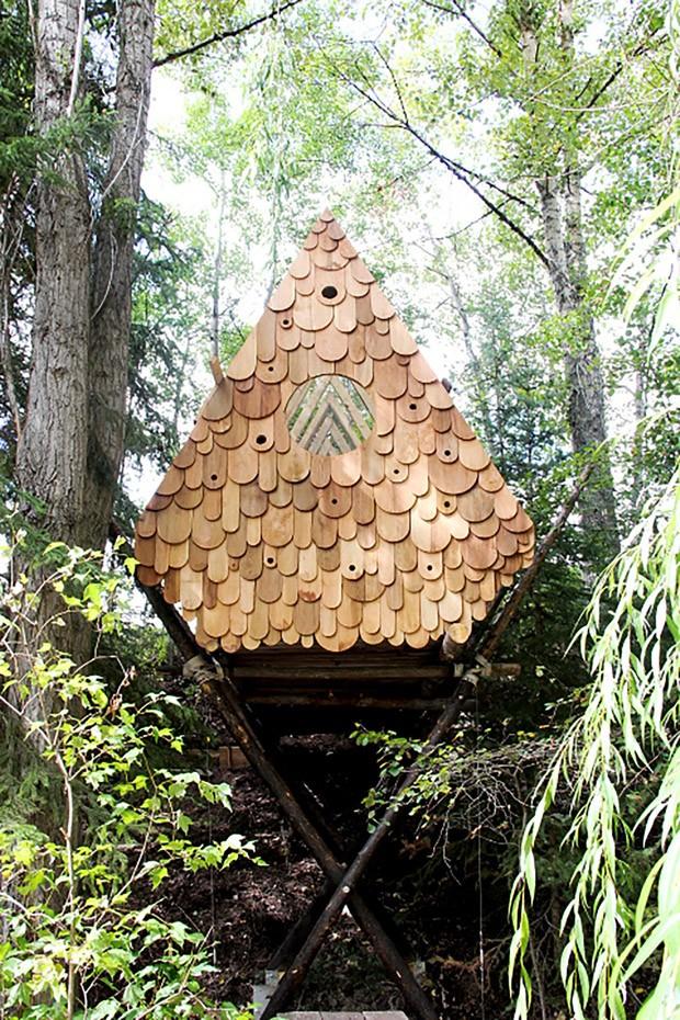 Casa na árvore tem espaço para humanos e pássaros (Foto: Divulgação)