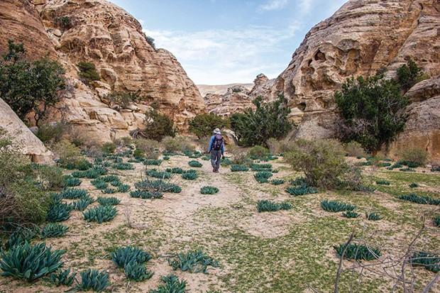 Caminho de Abraão, Oriente Médio (Foto: Divulgação)