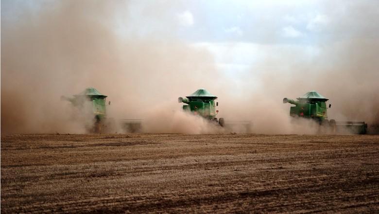 agricultura_soja (Foto: José Medeiros/Ed. Globo)