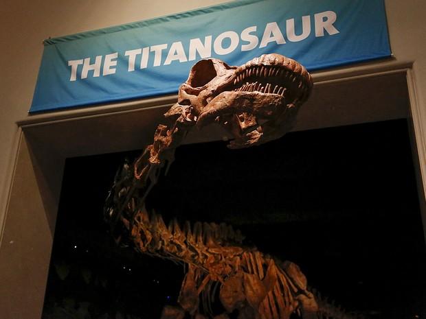 O titanossauro de 37 metros de comprimento em exposição no Museu Americano de História Natural, em Nova York (Foto: Shannon Stapleton/Reuters)