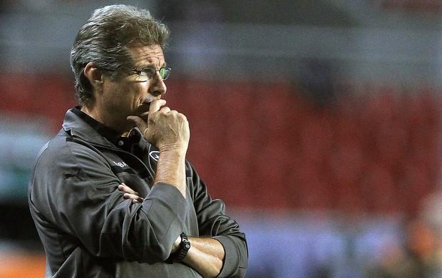 Oswaldo de Oliveira, Botafogo x Palmeiras (Foto: Agência EFE)
