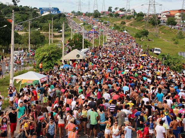 Milhares de pessoas participam do Galo (Foto: Indiara Bessa/G1 AM)