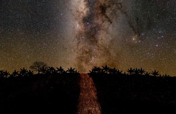 Imagem do caminho estelar (Foto: Leonardo Ariza via BBC)